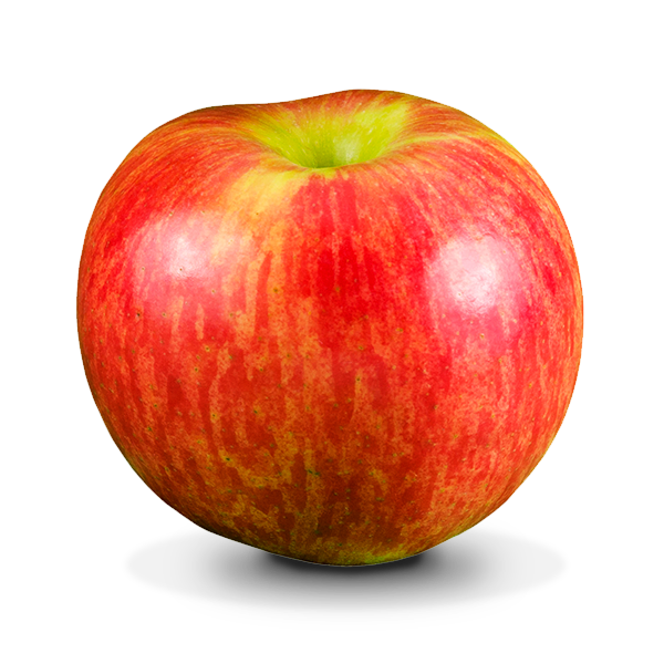 apple food. what makes us different? apple food
