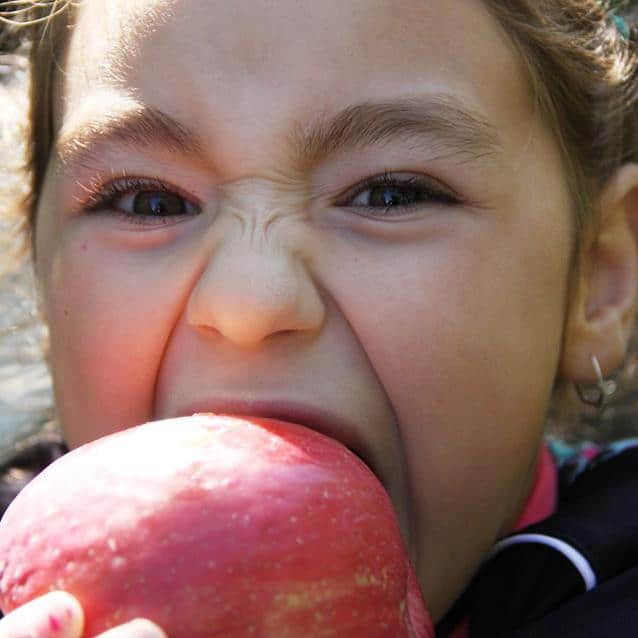 Growing Healthy Kids and Healthy Habits