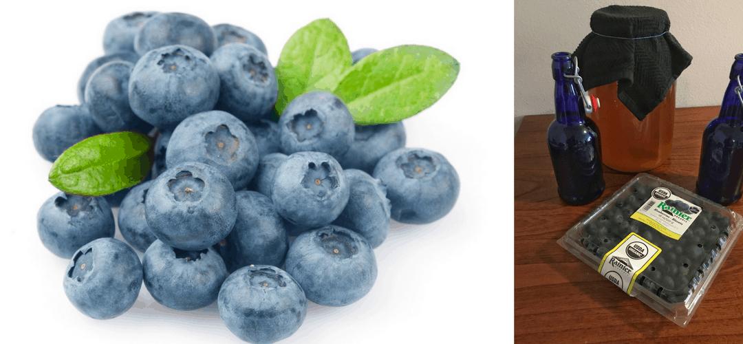 How to Make Blueberry Kombucha