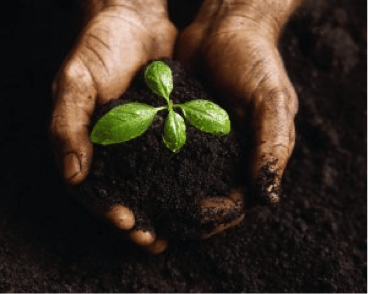 10 Ways to Make Earth Day an Everyday Priority